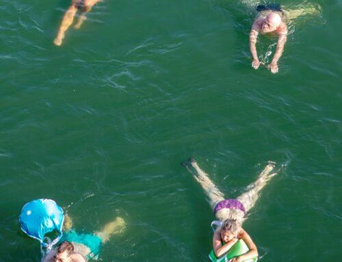 Sonderseite und Video: Rheinschwimmen in Basel